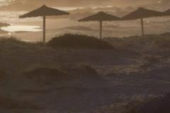Formentera Mai 2010 034